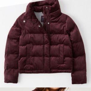 NWOT A&F Velvet Mini Puffer Jacket